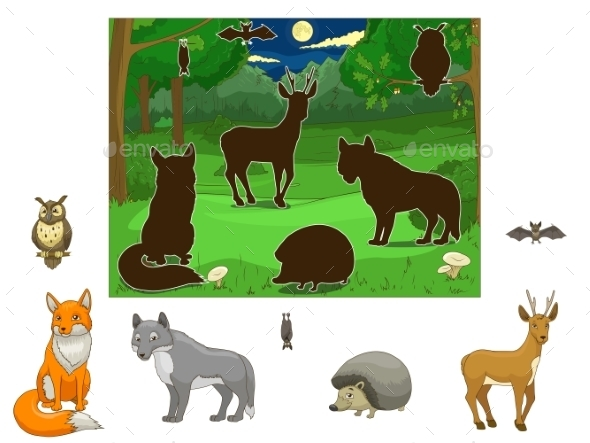Match the Animals to their Shadows - Landscapes Nature