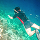 Snorkeler Diving - VideoHive Item for Sale