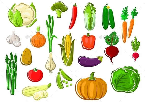 Isolated Farm Vegetables - Food Objects