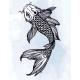 Elegant Koi Carp Fish Illustration. - GraphicRiver Item for Sale