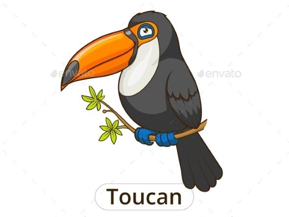 Toucan Bird Cartoon - Animals Characters