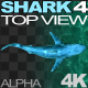 Shark 4 Top View - VideoHive Item for Sale