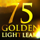 75 Golden Light Leaks Collection - VideoHive Item for Sale