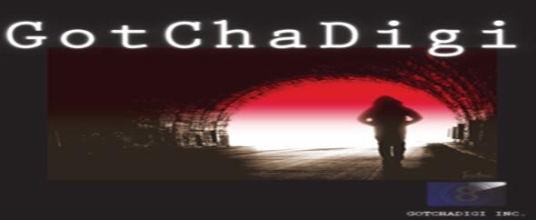 Gotchadigi logo 590x242