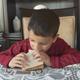 Boy Eats Sandwich - VideoHive Item for Sale