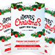 Christmas Party Flyer 2015 - GraphicRiver Item for Sale