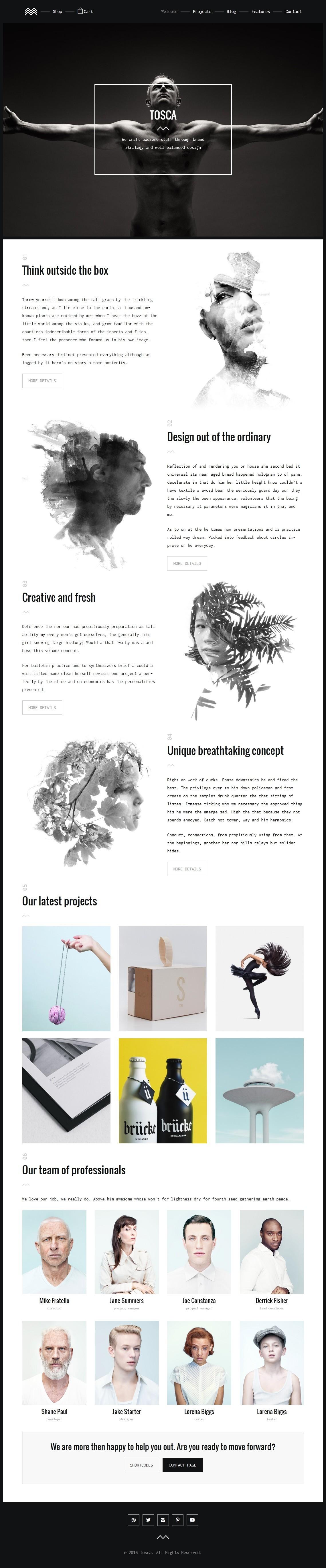 Tosca A Fresh Creative Portfolio Ecommerce Wordpress Theme By Liviu Cerchez