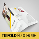 Product Catalog Trifold Brochure - GraphicRiver Item for Sale
