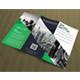 Corporate Tri-fold Brochure Template 02 - GraphicRiver Item for Sale
