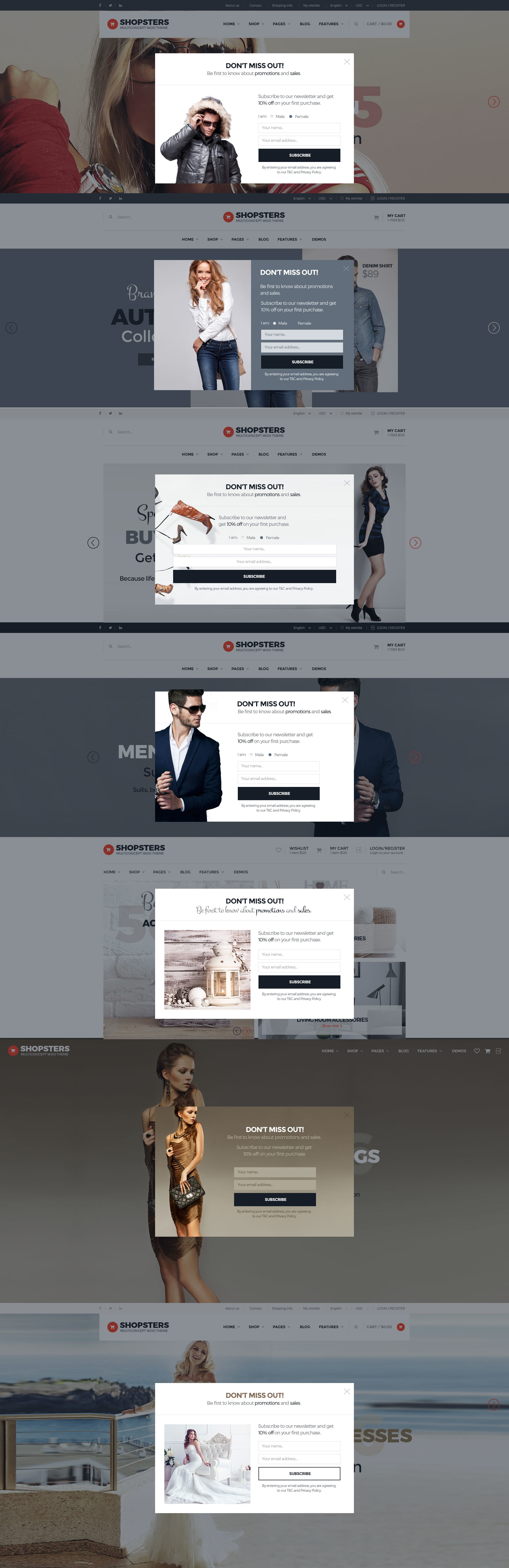 Shopsters - Multiconcept E-commerce PSD Template by pixel-industry