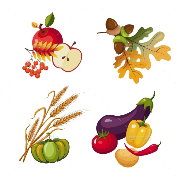 Vegetables And Fruits, Stalks, Autumn Leaves - Seasons Nature