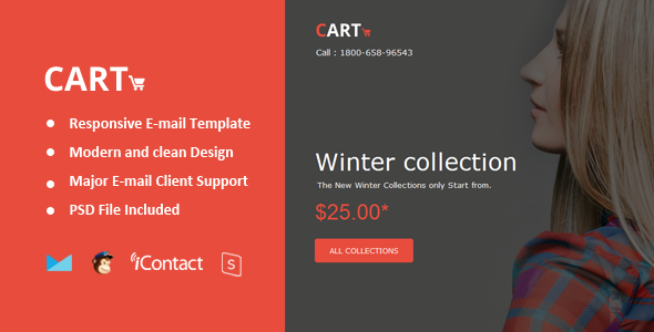 Cart Mail - Responsive E-mail + Online Access  - Email Templates Marketing