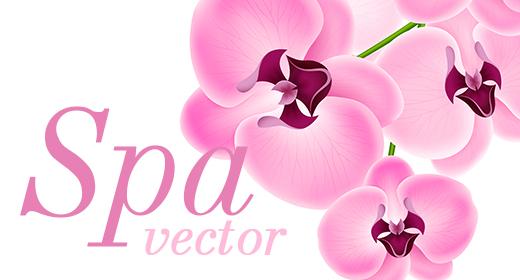 Spa vector