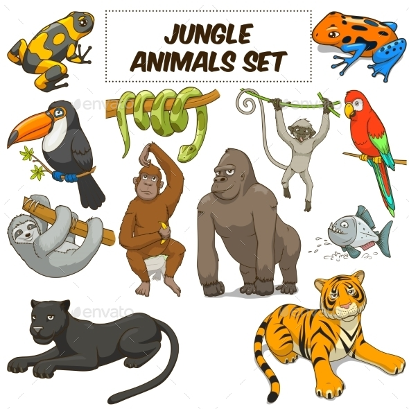 Cartoon Jungle Animals Set - Animals Characters