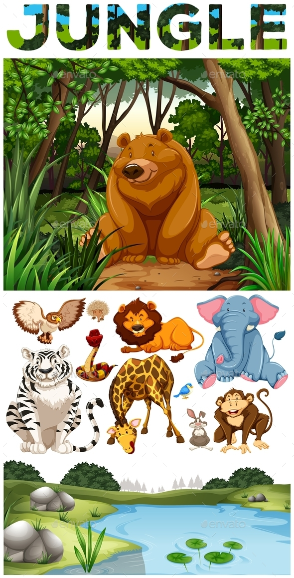 Wild Animals Living in the Jungle - Animals Characters