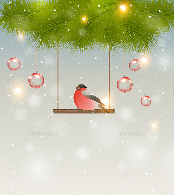Bullfinch and Green Pine Branch - Christmas Seasons/Holidays