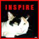 Inspiring Motivations