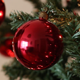 Preparing Christmas Tree - VideoHive Item for Sale
