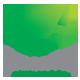 Green Tea Logo - GraphicRiver Item for Sale