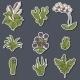 Houseplants Cartoon Stickers - GraphicRiver Item for Sale