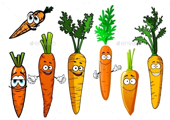 Cartoon Isolated Orange Carrot Vegetables  - Food Objects