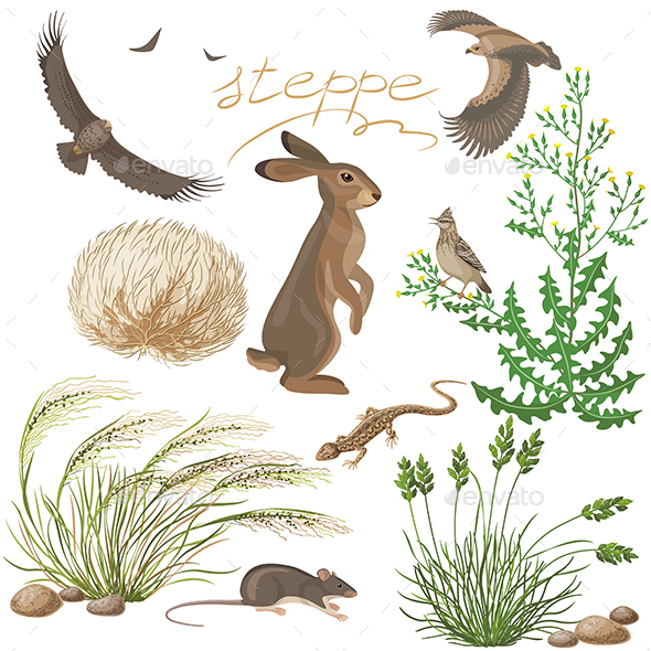 Steppe Plants and Animals Set - Animals Characters