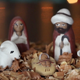 Christmas Manger - VideoHive Item for Sale