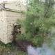Honeybee Swarm - VideoHive Item for Sale