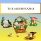 Forest Mushrooms And Basket With Mushrooms