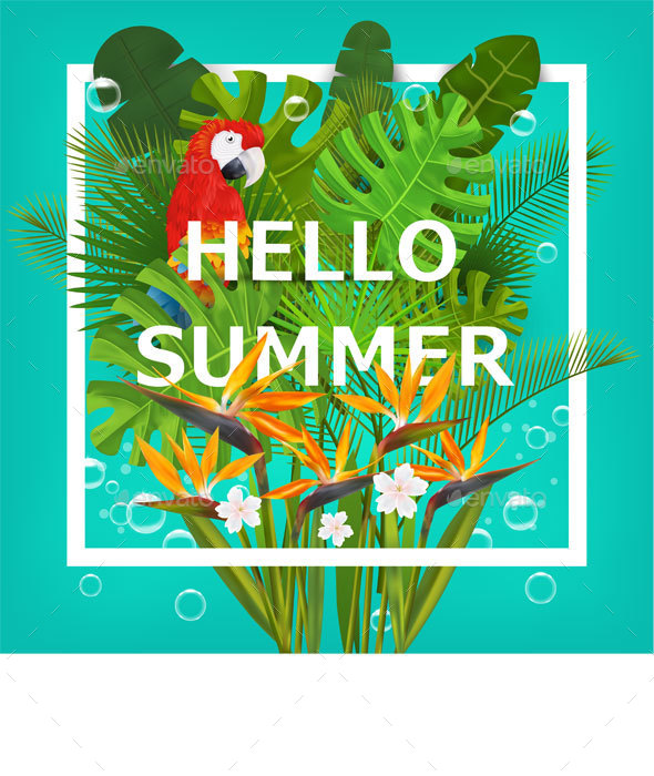Summer Background With Tropical Plants and Flowers - Flowers & Plants Nature