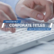 Corporate Titles and Lower Thirds 2 - VideoHive Item for Sale