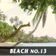 Beach No.13 - VideoHive Item for Sale