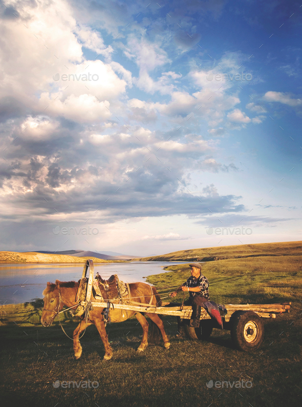 Man Driving Horse Cart Scenic View Nature Tranquil Concept - Stock Photo - Images