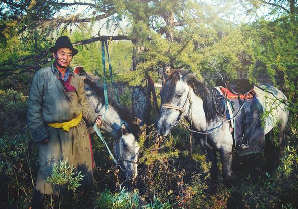 Mongolian Tsataan Horses Tranquil Solitude Nomadic Concept - Stock Photo - Images