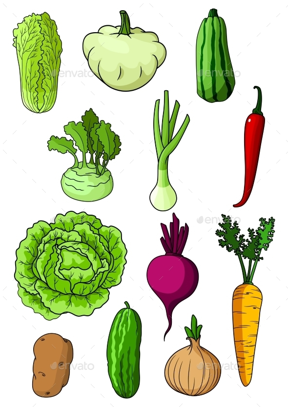 Fresh Isolated Organic Farm Vegetables - Food Objects