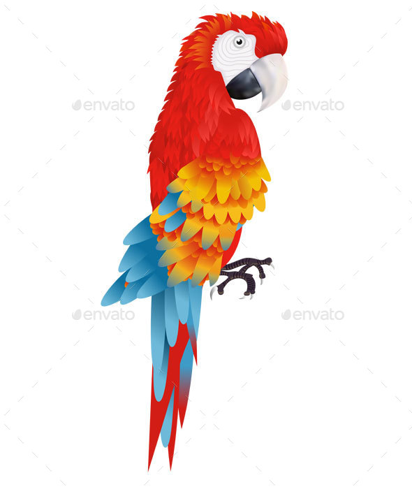 A Bright Macaw Parrot  - Animals Characters