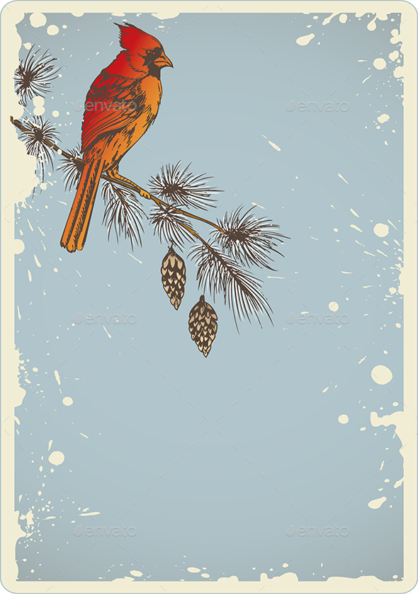 Pine Branch and Cardinal Bird - Christmas Seasons/Holidays