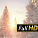 Winter Fir-trees with Sunshine - VideoHive Item for Sale