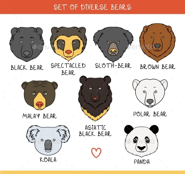 Bears Set - Animals Characters