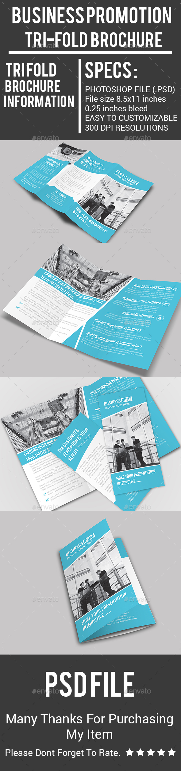 Business Promotion  Tri-Fold Brochure - Corporate Brochures