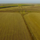 Flying Above Fields 2 - VideoHive Item for Sale