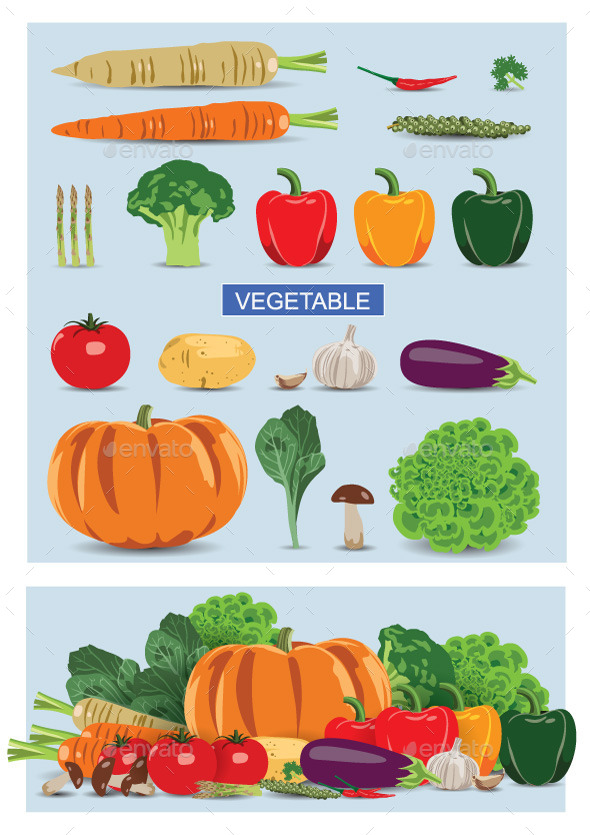 Vegetable - Food Objects