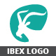 Ibex Logo - GraphicRiver Item for Sale