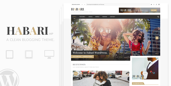 Habari – A Responsive WordPress Blog Theme