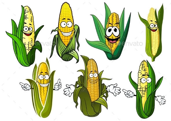 Cartoon Corn Cobs With Golden Grains - Food Objects