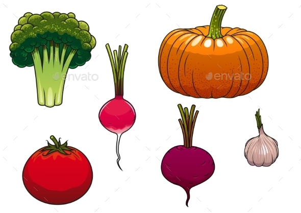 Fresh And Ripe Farm Vegetables - Food Objects