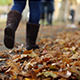 Walking in Autumn - VideoHive Item for Sale