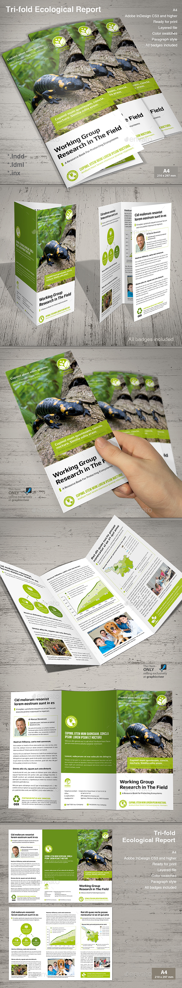 Tri-fold Ecological Report  - Informational Brochures