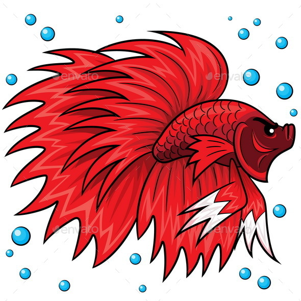Betta Fish Cartoon - Animals Characters