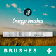 10 Grunge Overlay Brushes - Photoshop Brushes - GraphicRiver Item for Sale